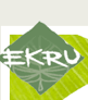 logo_ekru